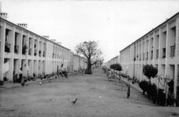 ANGOLA  - Province Portugaise De L'Afrique Occidentale -  LUANDA  -  Quartier Indigène Des Environs De La Ville - Angola