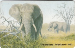 South Africa - 3 - Elephant - CP SAEGC - Afrique Du Sud