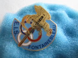 J Pin's Pin S Militaire Militaria Fontainebleau E I S - Militaria