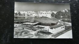 IBIZA (Baléares) 57 San Antonio Abad - Vista Parcial. Bolera Y Bar Sa Cala - Ibiza