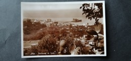Liban Lebanon Panorama De SAIDA   1941  Original Photo - Líbano