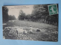 AULNAY Sous BOIS -- Chèvre Et Poules Dans La Prairie - Scène Champêtre - ANIMEE - Cpa PEU COURANTE !! - Aulnay Sous Bois