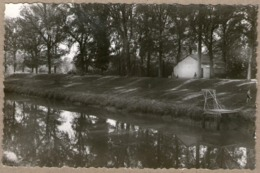 17 / SAINT-SAVINIEN - Canal, Piscine Et Plongeoir (années 50) St - France