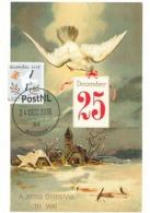 D38639 CARTE MAXIMUM CARD 2018 NETHERLANDS - CHRISTMAS BIRD AND LETTER - POSTMARK 24 DECEMBER 2018! CP ORIGINAL - Christmas