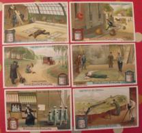 6 Chromo Liebig : Les Trucs De Cinéma. 1913. S 1070. Chromos. - Liebig