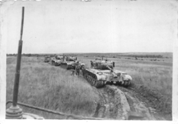 CHAR BLINDES MANOEUVRES DE SUIPPES 1954  PHOTO ORIGINALE FORMAT 8.50 X 6 CM - Guerra, Militari