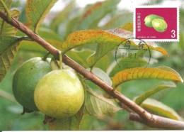 Carte Maximum - Taiwan - Formose - Taiwan Fruits - Guava - Psidium Guajava - 1945-... Republic Of China