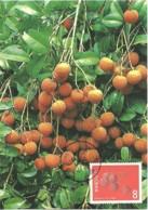 Carte Maximum - Taiwan - Formose - Taiwan Fruits - Litchi - Litchi Chinensis - 1945-... Republic Of China