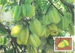 Carte Maximum - Taiwan - Formose - Taiwan Fruits - Carambola - Averrhoa Carambola - 1945-... Repubblica Di Cina