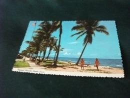 PIN UP BIKINI BIONDA E BRUNA  TROPICAL FLORIDA BEACH SCENE PALME SPIAGGIA USA - Pin-Ups