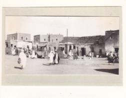 ALGERIE TOZEUR 1923 Photo Amateur Format Environ 7,5 Cm X 5,5 Cm - Lieux