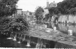 58 -CLAMECY : Les Bords Du Beuvron - CPSM Dentelée ( 3.820 Habitants ) - Nièvre ( Nivernais - Morvan ) - Clamecy