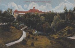 POLOGNE  ---  LOSLAU - Polonia