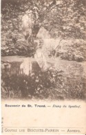 SINT-TRUIDEN - Vijver Van Het Speelhof - Sint-Truiden