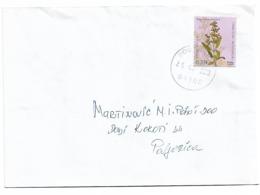 Montenegro Medicin Flover 2010 - Montenegro