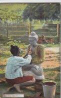 Burmese Idol Maker - Myanmar (Birma)