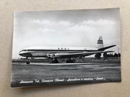 """ROMA AEROPORTO INT. CIAMPINO  AEROPLANO A REAZIONE """" COMET """"  1953 - Transports"""