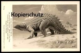 ALTE KARTE SCELIDOSAURUS AN ARMOURED DINOSAUR FOUND IN DORSET Saurier Saurien Saurian Dinosaurier Reptile Postcard Cpa - Dieren