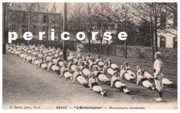 29  Brest   L'Armoricaine - Brest