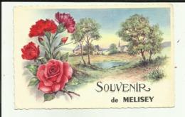 70 - Haute Saone - Souvenir De Melisey - Fantaisie - Roses - Oeillets - - Frankrijk