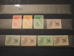 MALDIVES - 1960 OLIMPIADI/LUPA 8 VALORI - NUOVI(++) - Maldive (1965-...)