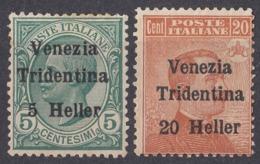 TRENTINO - ITALIA - 1919 - Lotto Di 2 Valori Nuovi Senza Gomma: Yvert 28 E 30, Come Da Immagine. - Trentino
