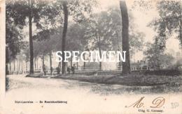De Moershoofdebrug - Sint-Laureins - Sint-Laureins
