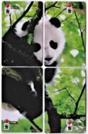 Hong Kong - Set Of 4 Giant Panda WWF Phonecards B - Hongkong