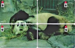 Hong Kong - Set Of 4 Giant Panda WWF Phonecards C - Hongkong