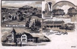 57  - Moselle -  BITCHE  - Gruss Aus BITSCH - Bitche