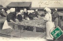 LES SABLES D' OLONNE (85) - Le Remuage Des Sardines  - PÊCHE - FISHING - MÉTIER - Ed. LL - 142 - Sables D'Olonne