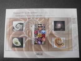 België Belgium 2018 - Geometrie In De Natuur : Spiraalvorm / Geometry In Nature : Spiral Shape (part I) - Nuovi