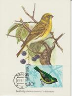 Albanie Carte Maximum Oiseaux 1971 Serin 1311 - Albanië