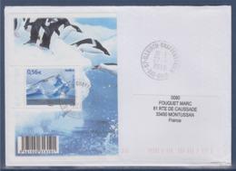 = Protection Des Zones Polaires Et Des Glaciers N°4350 Du Bloc Paysage Polaire Et Albatros Sur Enveloppe 27.1.2010 - Eventos Y Conmemoraciones