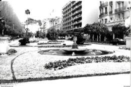 06  MENTON  . Le Jardin Public  Sous La NEIGE , ( Photo 18 X 12 ) - Lieux