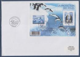 = Protection Des Des Pôles, Des Glaciers N°F4350 Bloc Paysage Polaire Albatros Manchots Enveloppe 1er Jour 28.3.2009 - Eventos Y Conmemoraciones