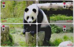 Hong Kong - Set Of 4 Giant Panda WWF Phonecards D - Hongkong