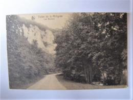 BELGIQUE - NAMUR - ANHEE - Vallée De La Molignée - Anhée