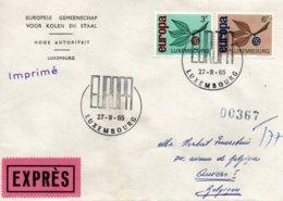 O28  Europa 1965 Luxembourg Expres    TTB - European Ideas