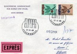 O29  Europa 1965 Luxembourg Expres    TTB - European Ideas