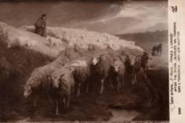 """CPA - Ernest AMAS - Né à Landrecies 1869 - """"Après L'ORAGE"""" (troupeau De Moutons)- Edition A.Noyer - Peintures & Tableaux"""