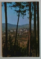 BIBBIENA (AREZZO) - Casentino Pittoresco  - Vg T2 - Arezzo