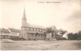 SINT-TRUIDEN - Eglise St-Gangulphe - Sint-Truiden