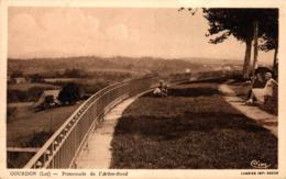 10061-2019     GOURDON  PROMENADE DE L ARBRE ROND - Gourdon