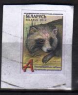 Belarus  1 Used  Stamp  On Part Of The Envelope Raccoon Dog - Francobolli