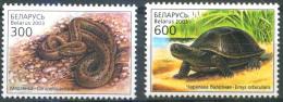 _TH Belarus 2003 Reptiles 2v MNH - Slangen
