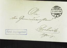 """DR: Falt-Fern-Brief """"Fürstl. Angelegenheiten"""" Aus GREIZ Vom 22.12.08 Mit Interes. Zeitgeschichtl. Inhalt Auf 2 Din-A4 S. - Briefe U. Dokumente"""