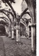 ST MICHEL EN L' HERM ABBAYE DE ST MICHEL   PROMENOIR (di357) - Saint Michel En L'Herm