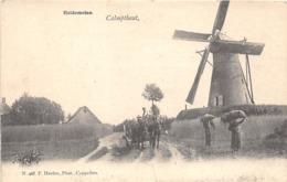 BB075 Kalmthout Calmpthout Heidemolen Voor 1906 - Brecht