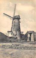 B095 Bikschote Bixschote Molen Ca 1915 - Langemark-Poelkapelle
